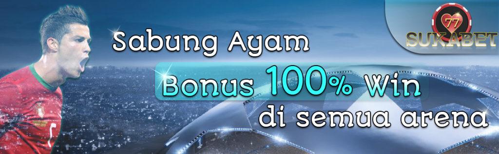 Bandar Sabung Ayam s128 & sv388