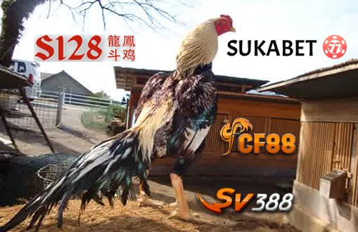 Inilah Menu Rahasia Dari Ayam Jawara