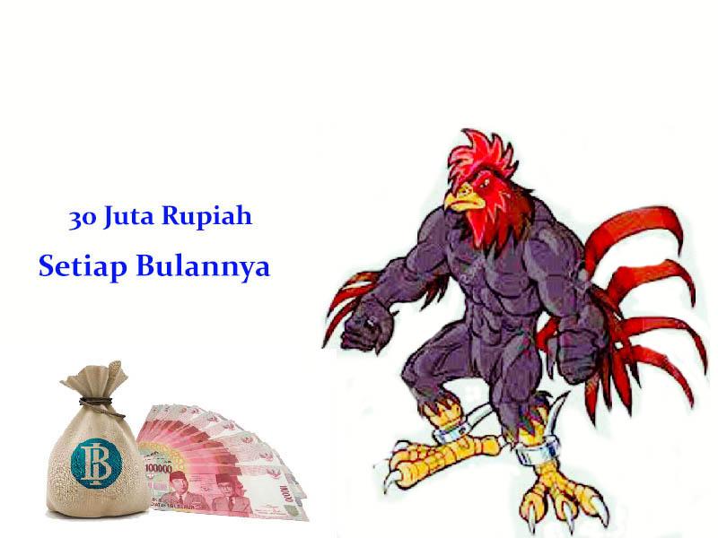 Bonus Sabung Ayam Hingga 30 Juta Rupiah Perbulan
