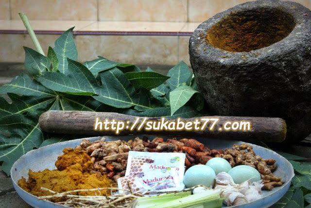 Jamu Special Ayam Bangkok Menjadi Ayam Super Kuat