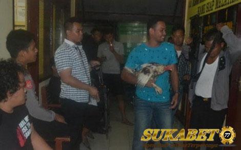 Lokasi Judi Sabung Ayam Diobrak-Abrik Oleh Polres Sidrap